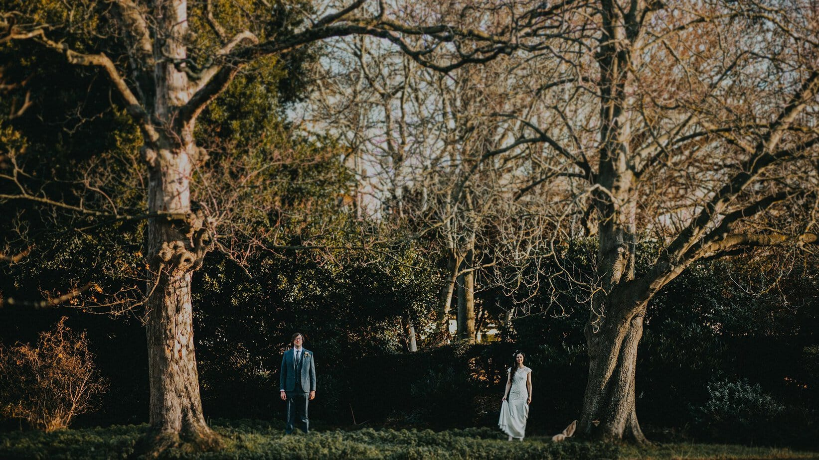 vintage couple get married and pose for photos between two large trees in Dublin