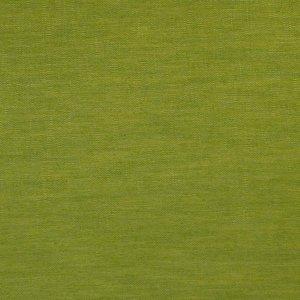 COLIBRI-greenapple